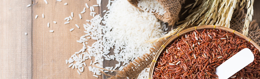 APAC Indonesia rice-blog